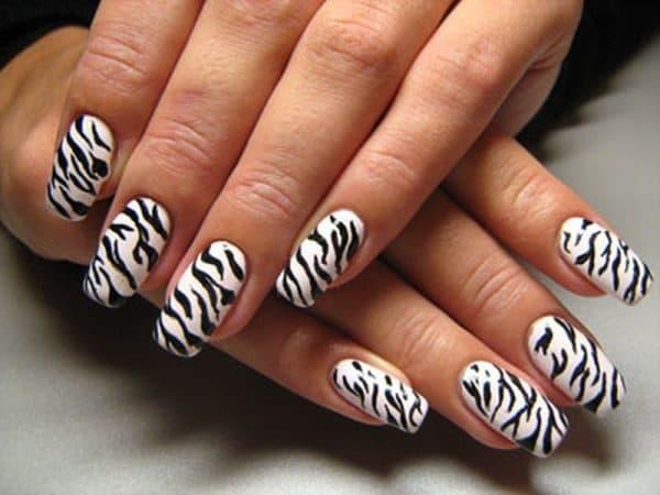feather & zebra nail designs 1