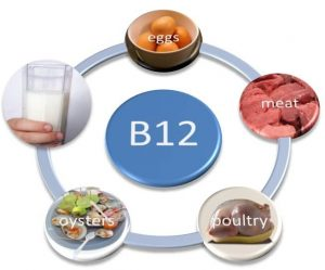 Food Rich with B 12 Vitamins