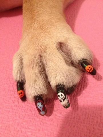 nice dog nail design