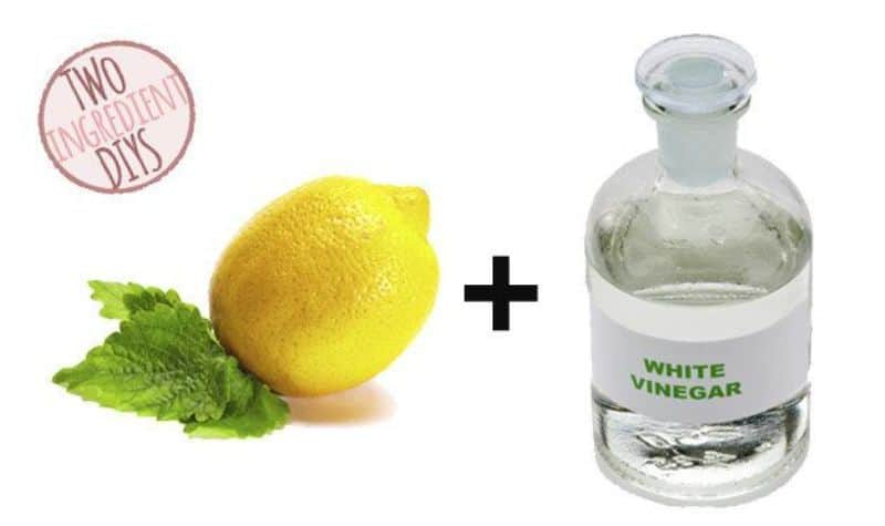 Vinegar Mixed with Lemon Juice