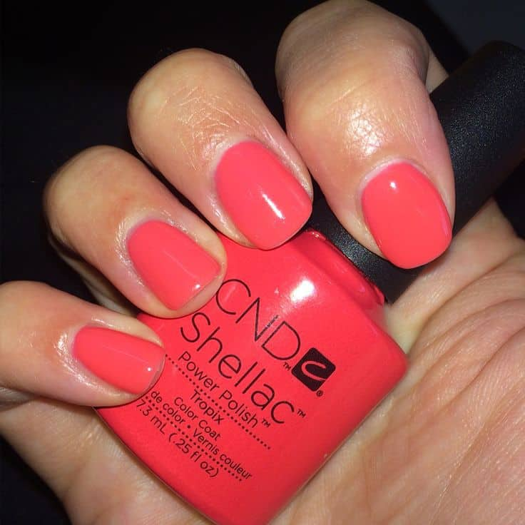 shellac colors - tropix