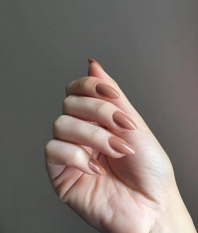 Brown Nude Nails